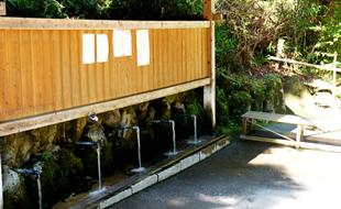 湧水場のご紹介のイメージ
